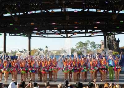 Disneyland & Universal Studios Orlando